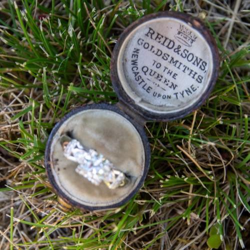 Reid & Sons Goldsmiths Small Ring Box